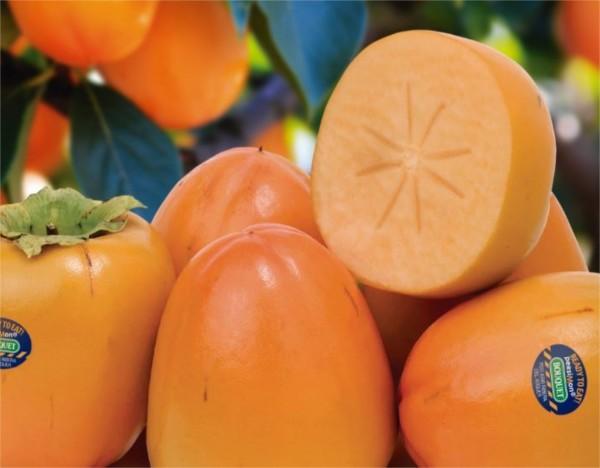 Reconnais-tu ce fruit?