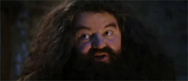 """""""-Tu es un ... Harry.-Un quoi ?"""""""