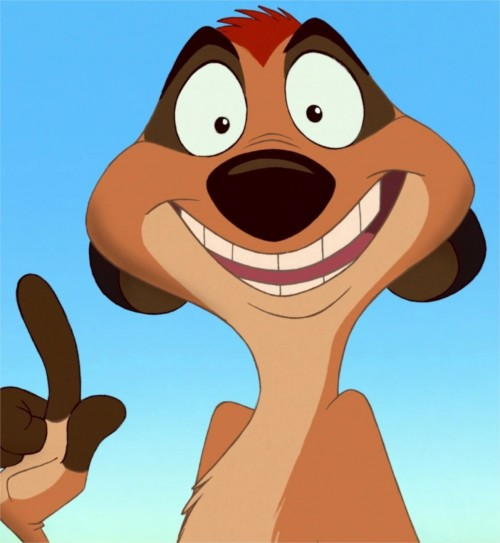 Tu es Timon, la joie de