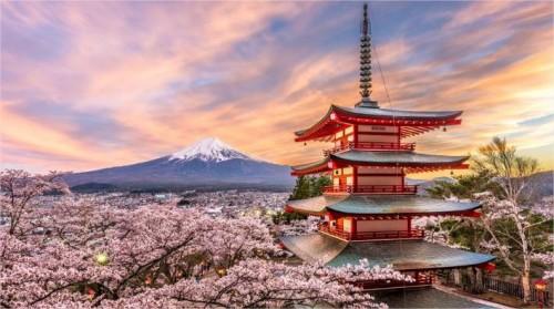 Le Japon te correspond parfaitement!